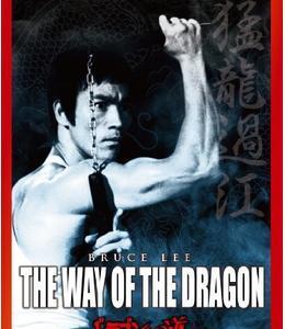 映画【ドラゴンへの道】感想