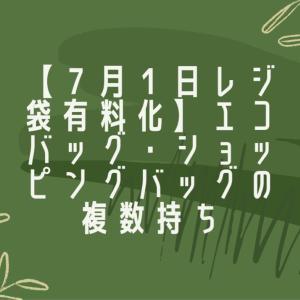 【7月1日レジ袋有料化】エコバッグ・ショッピングバッグの複数持ち