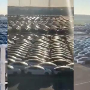 テスラ、欧州における今四半期末に向けての納車ラッシュ!