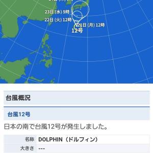 【悲報】大型台風「ドルフィン」誕生、日本終了へ……