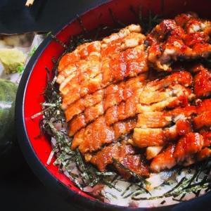 6月14日 無性に食べたい鰻!今年の土用の丑の日は7月21日らしい。でも、その日を待たずに鰻を食べに行きたい!
