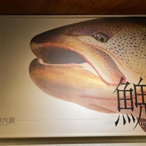 朱鞠内湖の宿泊は「レークハウスしゅまりない」