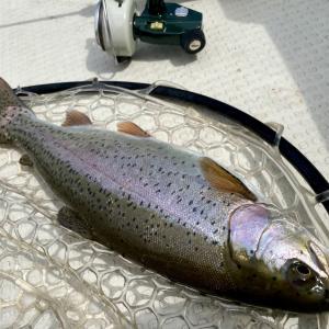 春の芦ノ湖、ボートでトラウトを釣りたいならこうやる!