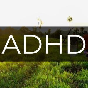 都会はADHD症状を悪化させ、自然はADHD症状を緩和させる