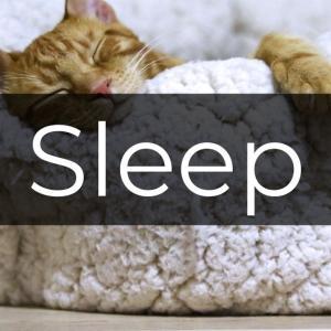 朝起きれない…起立性調整障害に効く2つのメソッド