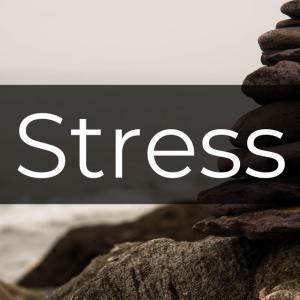 ストレスに強くなる!瞑想をやってみよう