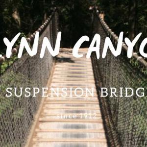 リンキャニオンパークで無料の吊り橋を渡ろう