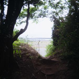初夏と海 3
