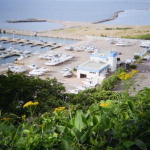 初夏と海 9