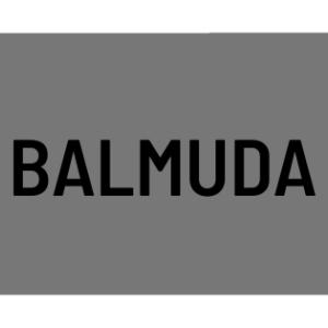 バルミューダの評判は?おすすめバルミューダ4選