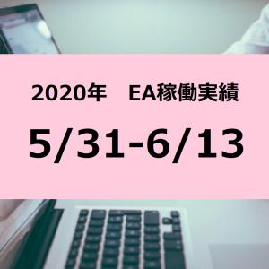 【2020年稼働報告】5/31-6/13