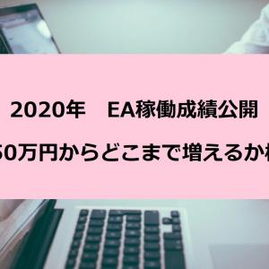 【2020年】自作EAの運用成績を公開!50万円チャレンジ企画
