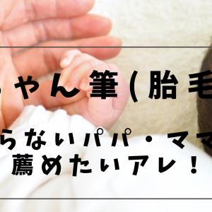 【日常】赤ちゃん筆(胎毛筆)いらないパパ・ママに薦めたいアレ!