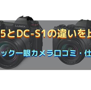 DC-S5とDC-S1の違いを比較!パナソニック一眼カメラ口コミ・仕様を調査