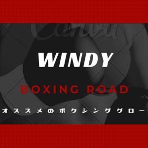 ウィンディのボクシンググローブ【選び方を解説】