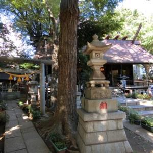 東京・杉並区 氷川神社、気象神社へ行ってきました