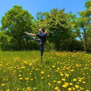【写真】花畑で写真撮影