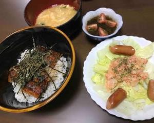 今日の晩ご飯(505):うなぎ丼