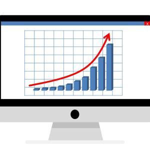2021年6月 投資結果報告【配当金】【ポートフォリオ】【資産配分】