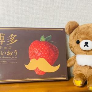 伊都きんぐさんから博多チョコぱいおう頂きました♪