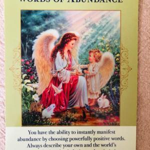 今日の一枚 words of abundance