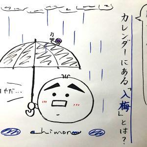【2020年6月10日】関東も梅雨入り間近!カレンダーにある「入梅」とは?