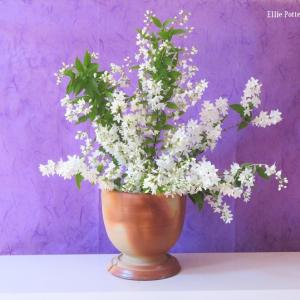 花器 ヒメウツギ Vase, and Deutzia gracilis