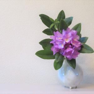 花入れ:シャクナゲ Vase, and Rhododendron