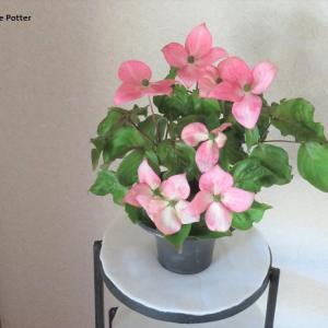 花器 ヤマボウシ Vase, and Japanese strawberry tree