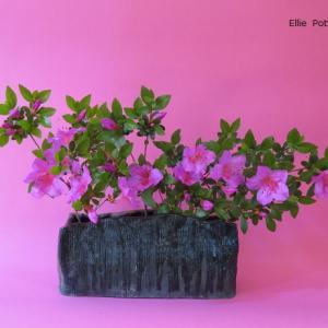 花器 つつじ Vase, and Azalea