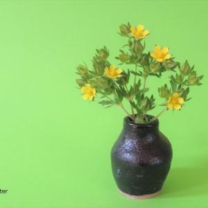花入れ エゾノミツモトソウ Vase, and Potentilla norvegica