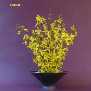 花器 レンギョウ Vase, and Forsythia