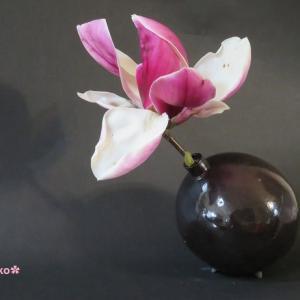 花入れ 和気シリーズ モクレン Vase, and Magnolia