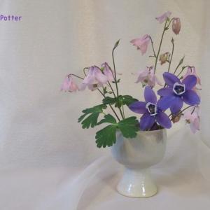 花びん オダマキ Vase, and Columbine
