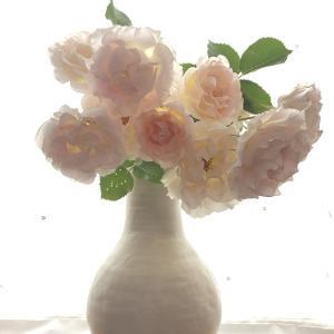 花びん バラ Vase, and Rose