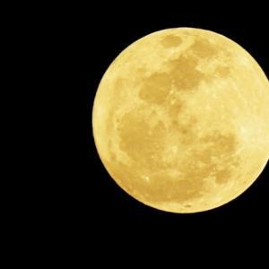 24年ぶりのスーパームーン、皆既月食です。