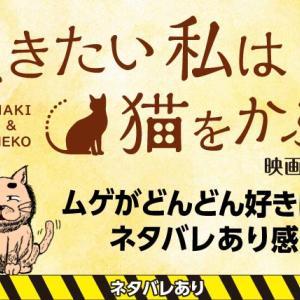 [ネタバレあり]ムゲがどんどん好きになる「泣きたい私は猫をかぶる」ネタバレ感想紹介![映画]