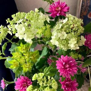 花の色が黄緑色から白へ変化するお花