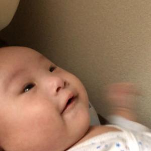 ダウン症の子の発達の違い