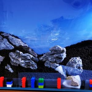 [水槽]化粧砂とソイルの敷き分けはレゴと100均グッズでばっちり