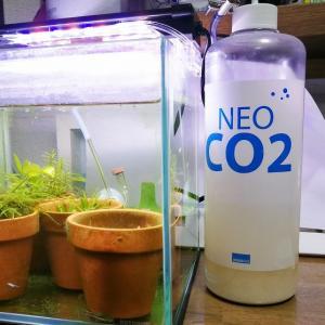 [水槽まとめ]おしゃれ発酵式 CO2添加キット(NeoCO2)まとめ