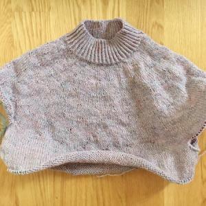 もう一枚のセーターに再着手 ~Magnolia