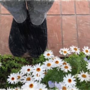 【MERRELL】ジャングルモック|歩くのが楽しくなる靴