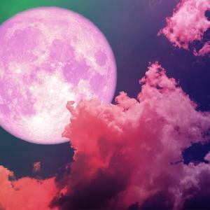 【天体】今夜昇る月はストロベリームーン 別名「恋を叶えてくれる月」
