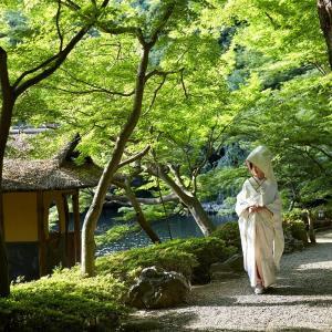 【白金台】江戸から続く老舗「目黒雅叙園・八芳園」