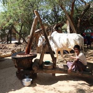 【ミャンマーへのバックパッカー旅。そこは、素朴であたたかい、素敵な国だった】 ~軍事政権下のミャンマーを旅して、、(その1)~ (#軍事クーデター #アウンサンスーチー拘束・軟禁 #ミャンマーの正月は4月 #水かけ祭りティンジャン #ミンナスーMinnathu #世界遺産バガン #FECドル兌換券への200ドル強制両替 #ミャンマーの化粧品タナカ)