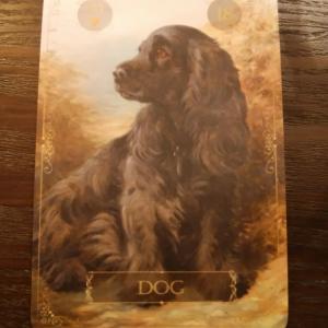 【犬】のルノルマンカード/ルノルマンカード占い師宝城あやの