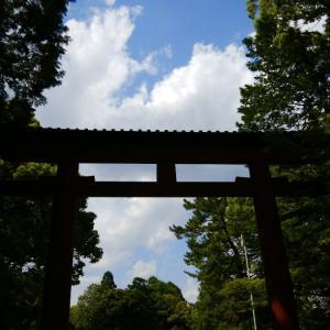 Gとの戦い、その後はてんやわんや◆夏の京都の思い出◆