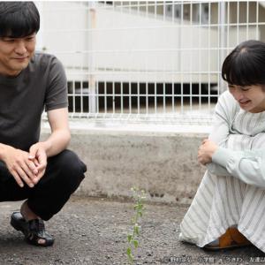 不倫だけど純粋な恋!ドラマ『うきわ』3話の感想と予想!ネタバレあり!