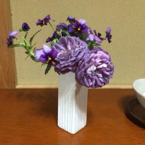 遅咲きの日本人作出白バラ